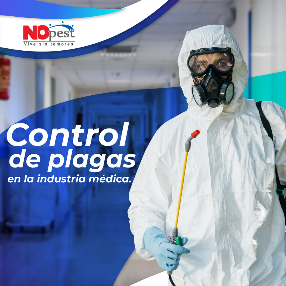 control de plagas en costa rica